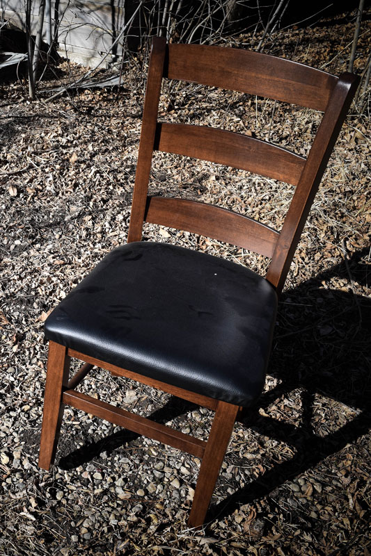 Dining-Chair-DSC_2071_sm